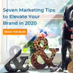 Seven Marketing Tips to Elevate Your Brand in 2020